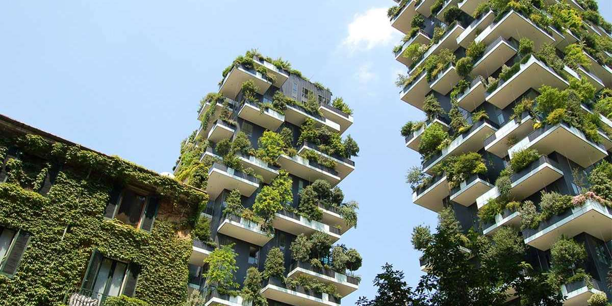 Vertical Gardening Doesn't Have To Be Expensive